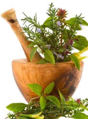 HERBAL cures HERBALIST SURVIVAL 79 old books HERBS natural healing plants SKILLS